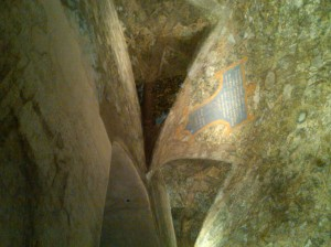 Ceiling Painting by Leonardo Da Vinci  Castello Sforzesco, Milan