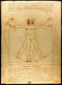 The Vitruvian Man by Leonardo Da Vinci Gallerie dell'Accademia, Venice